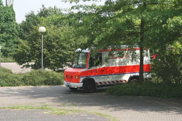 Img 5151
