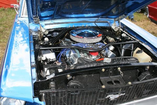 IMG 7302